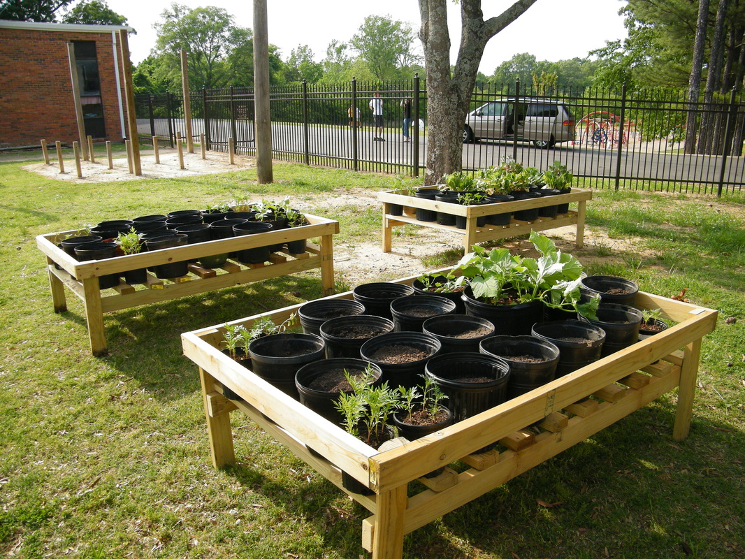 Gardening Ideas On Pinterest Trellis Outdoor Classroom